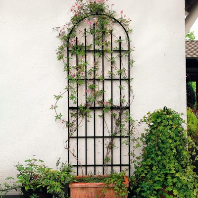Rankgitter Parc floral