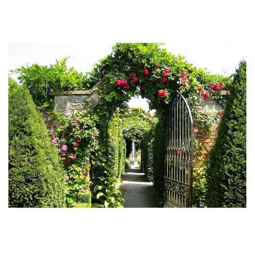 Gartenposter Eden 130 x 90 cm