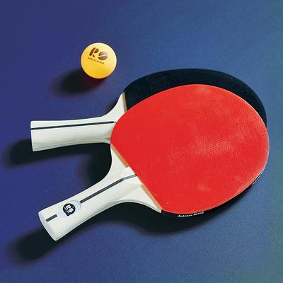 Set of 2 Outdoor Ping Pong Paddl...
