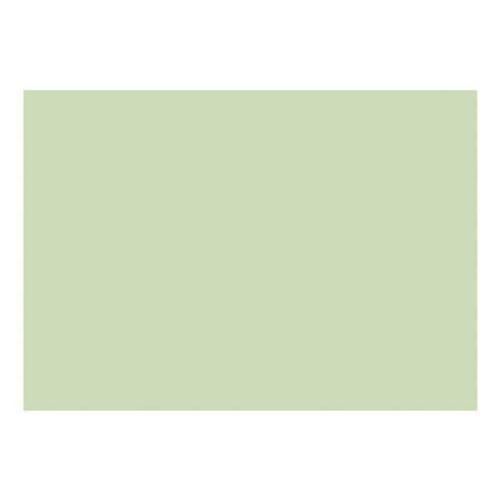 Karteikarten A4 quer, blanko grün, Brunnen, 29.7x21 cm