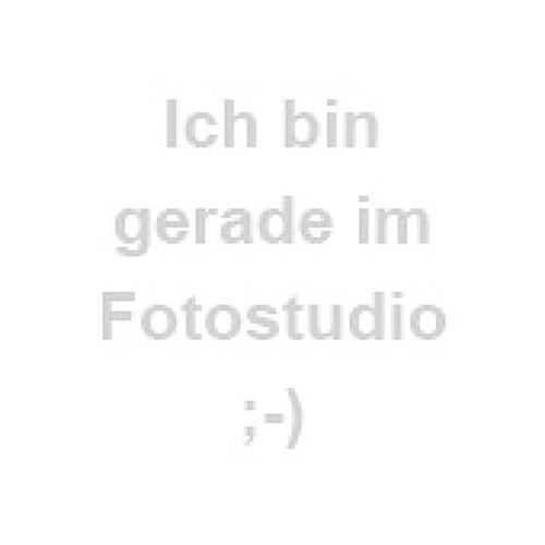 Samsonite Pro-DLX 5 Flugumhänger 37 cm Laptopfach magnetic grey