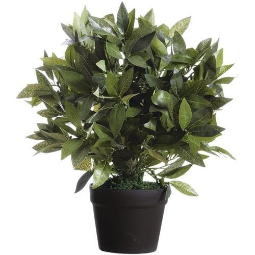 Kunstpflanze »Lorbeerbaum« 50 cm, Paperflow